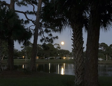 gator trace moon over the lake